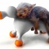 Cuando llegan los perros a su madurez sexual