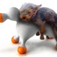 Disfunción eréctil también afecta a los perros