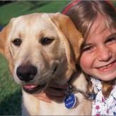 Los niños frente a la muerte de su mascota