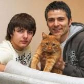Tácticas para que un gato adoptado se adapte a su nuevo dueño