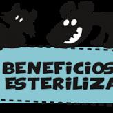Beneficios de la esterilización de Mascotas