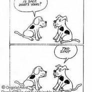 Ideas para nombres de perros