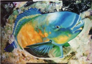 pez loro 2jpg 300x207 Pez Loro