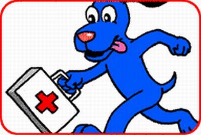perro cuid primaux Actue rapido si su perro resulta envenenado