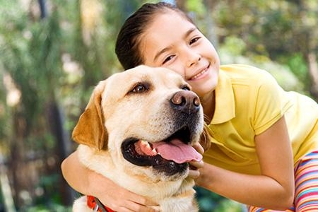 Cómo debes socializar tu Mascota