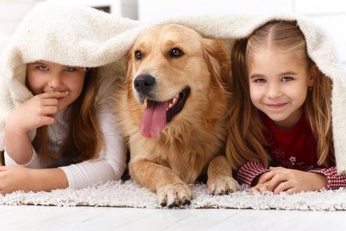 Mejores razas de Perros para Ninos