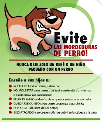 prevenir las mordeduras de perro