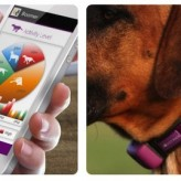 Collar para monitorizar la salud de tu Mascota