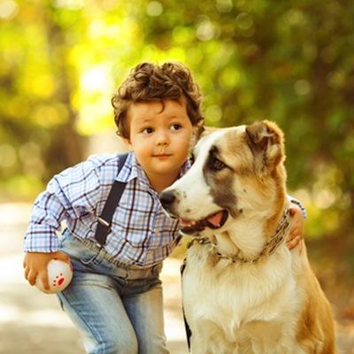 Cómo socializar tu Perro