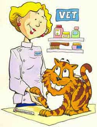 Vacunas necesarias en los Gatos