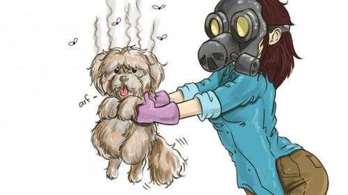 El mal olor del perro