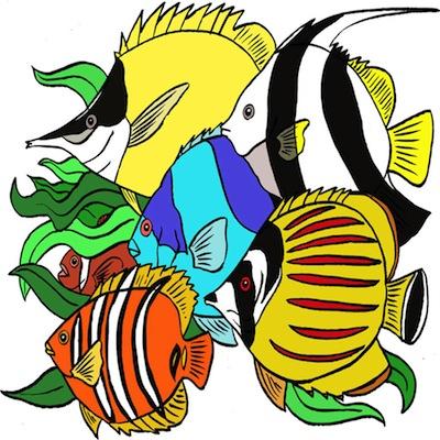 peces 2 Peces